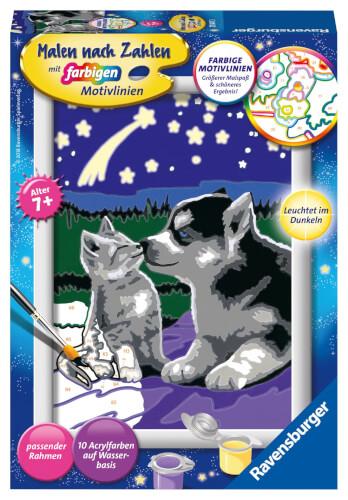 Ravensburger 278473 Malen Nach Zahlen Hund Und Katze