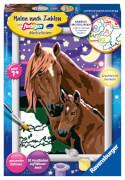 Ravensburger 27844 Malen nach Zahlen: Pferde